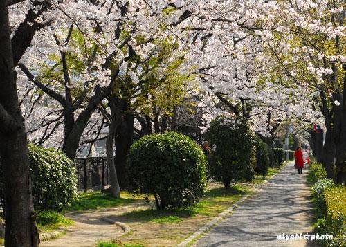 祇園白川通0403-(5).jpg